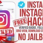 Get Instagram Hacks for IOS 9 – 10.2 Followers Spoof