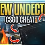 CSGO Free Private Hack UNDETECTED 2019 – DOWNLOAD CHEAT