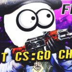 (NEW) BEST FREE CS:GO CHEAT 100 UNDETECTED 2019 (Aimbot, Wall