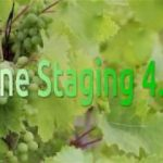 How to install Wine 4.14 Staging on Ubuntu 18.04