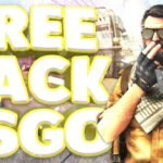FREE BEST LEGIT HACK CSGO FREE DOWNLOAD (UNDETECTED) JANUARY
