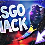 🔥CS GO HACK 2020 WH + AIMBOT FREE DOWNLOAD MACOS Windows