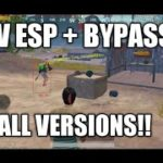 NEW ESP AND BYPASS FOR ALL VERSION YOUTUBERS EFFORT