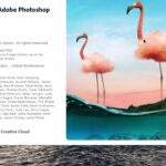 download and install photoshop 2021 and other adobe products in