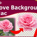How to Remove Image Background on Mac – Mac OS Big Sur 2021